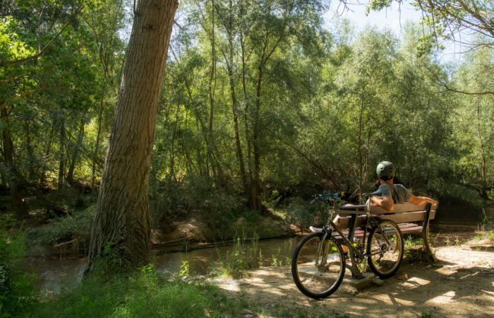 Via Augusta Trail