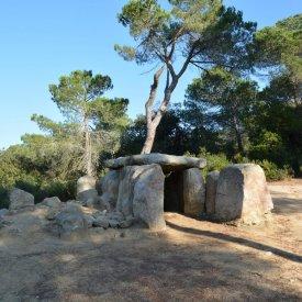 Montnegre Corredor Natural Park